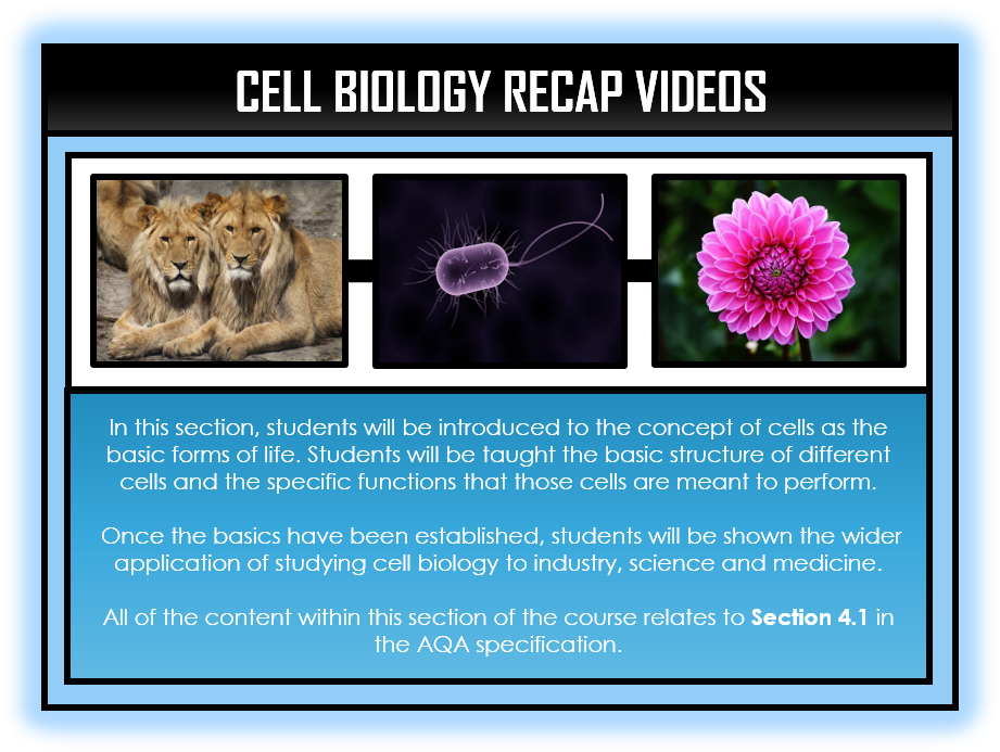 Combined Science Snapshots - Cell Biology