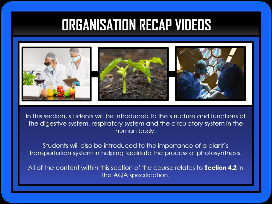 Biology Snapshots - Organisation Section