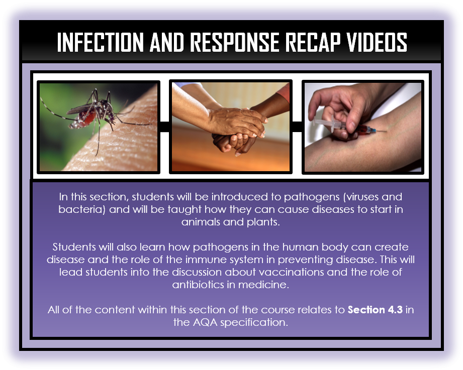 Combined Science Snapshots - Infection and Response Section