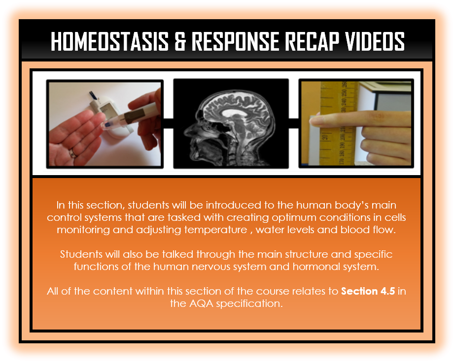 Combined Science Snapshots - Homeostasis and Response Section