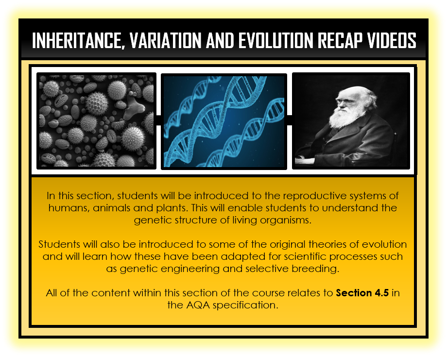 Combined Science Snapshots - Inheritance, Variation and Evolution Section