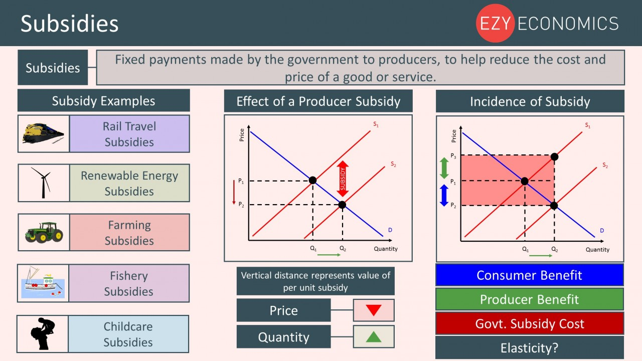 Year 12 Recap - Subsidies