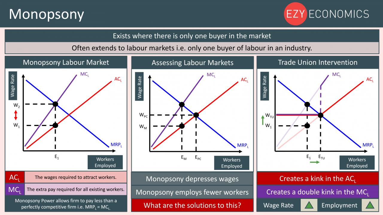 Economics Year 13 revision Day 15 - Monopsony