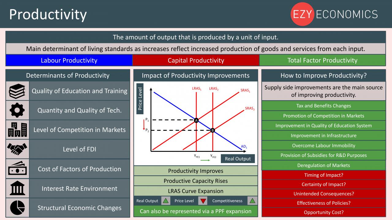 Economics Year 13 revision Day 18 - Productivity