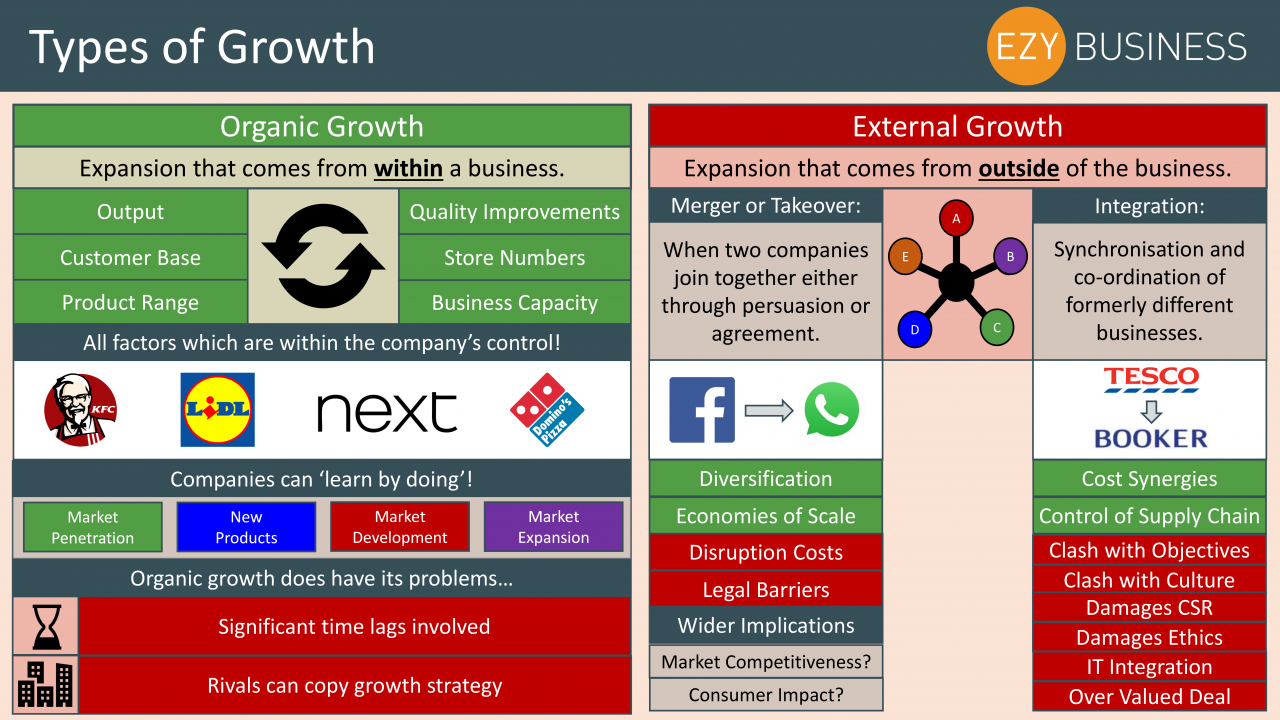 Business Studies Year 13 revision Day 2 - Types of Growth
