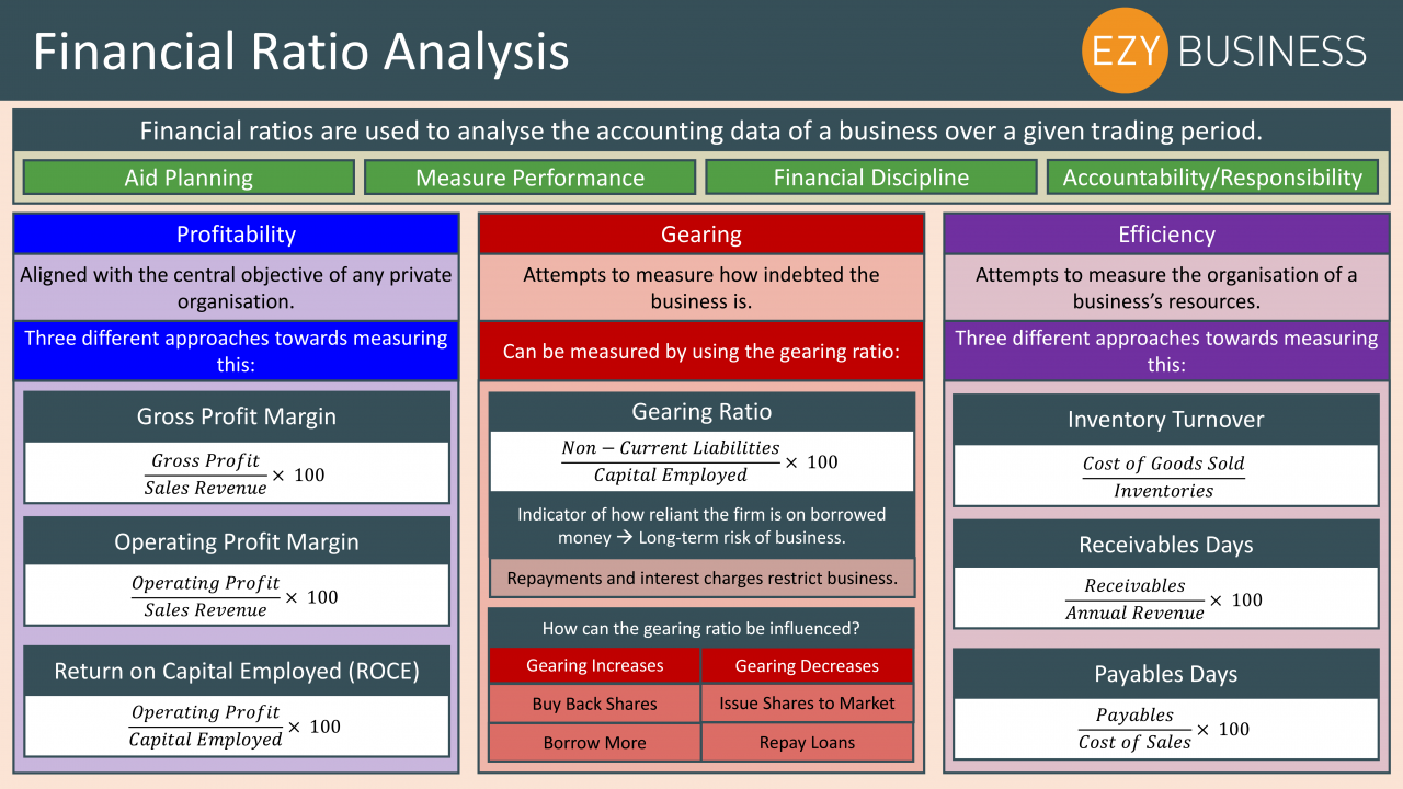 Business Studies Year 13 revision Day 25 - Financial Ratio Analysis